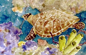 watercolor, sea turtle in coral reef